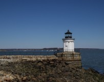 Bug Light 1