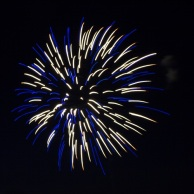 Firework - Blue and White