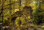 Archway in the Woods 2