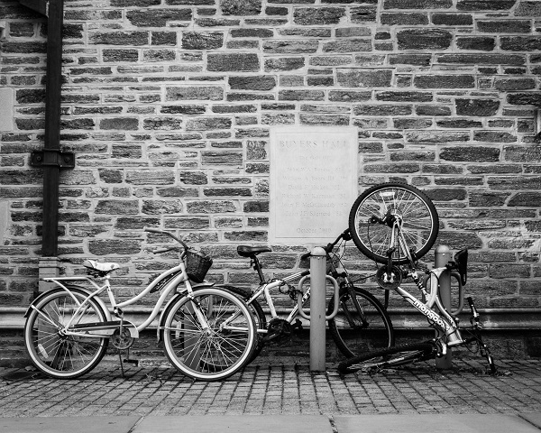 Princeton - Jumble of Bicycles - BW