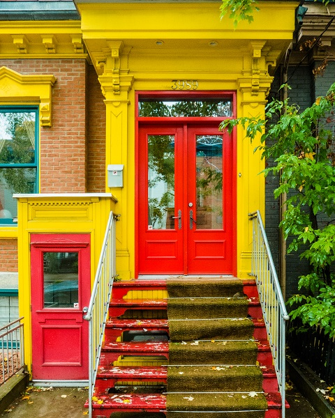Mustard Colored Door