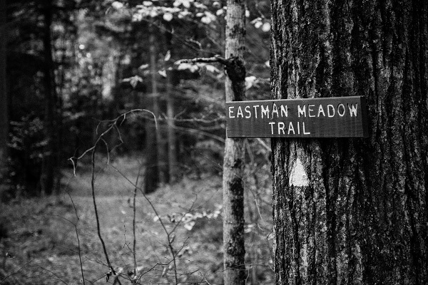 Eastman Meadow Trail BW