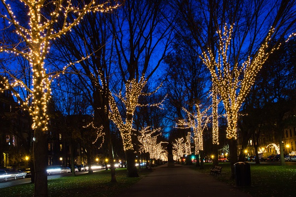 Comm Ave Mall