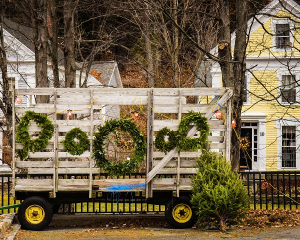 Trees and Wreathes For Sale