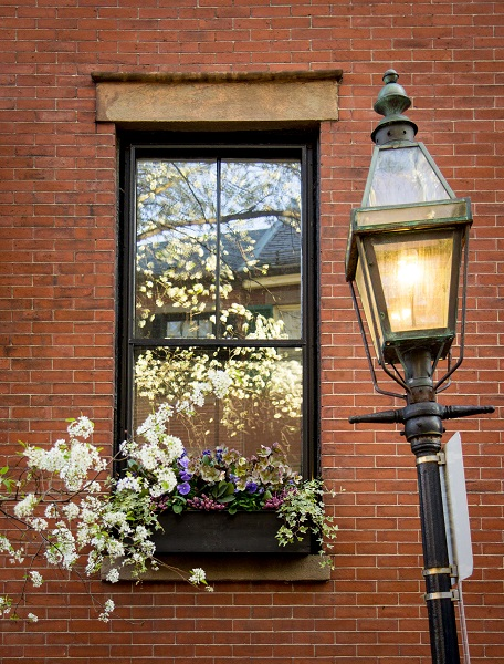 Beacon Hill Window