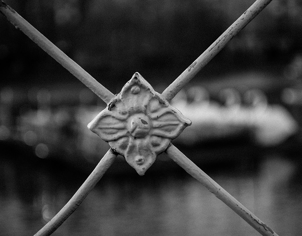 Boston Public Garden Fence Detail