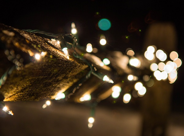 lights-on-the-fence